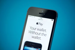 Why smaller retailers should give Apple Pay the cold shoulder{{}}